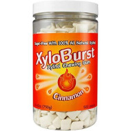 Xyloburst Xylitol Gum Jar, Cinnamon, 500 Count,26.45 Ounces