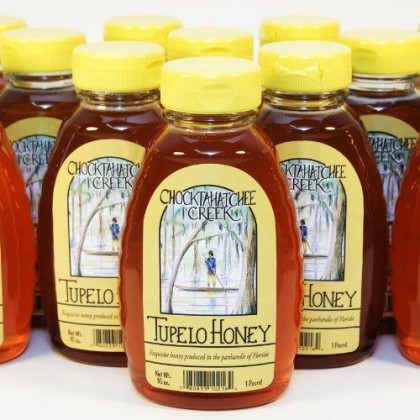 Tupelo Honey 16Oz. Bottle - Bulk Case Of 12 - Premium From Sleeping Bear Farms Beekeepers In The Florida Apalachicola River Basin