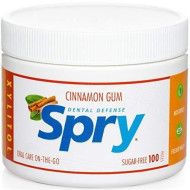 GUM CINNAMON 100CT (Pack of 3)