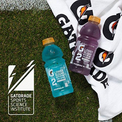 Gatorade G2 Low Calorie Thirst Quencher, Fruit Punch, 24 Count, 12 Oz Bottles
